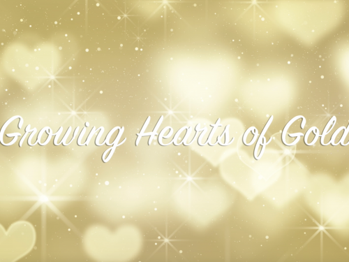 Video Series | Growing Hearts of Gold, Donata Eigenseher, Canada
